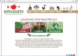 MISSION PAGE GRAPHICS